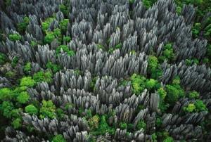 Tsingy-de-Bamaraha
